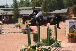 equestrian center Tryon NC