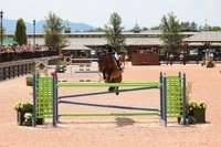 horse jumping and show insurance