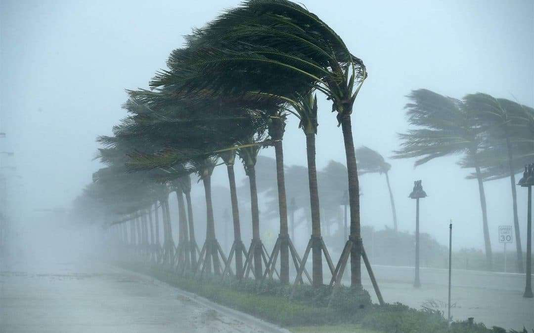 Protecting Yourself During Hurricane Season