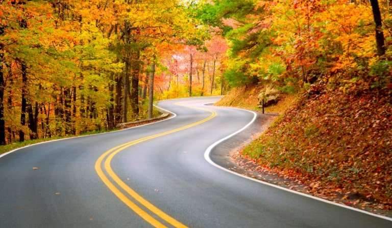 Top Fall Driving Hazards and How to Handle Them