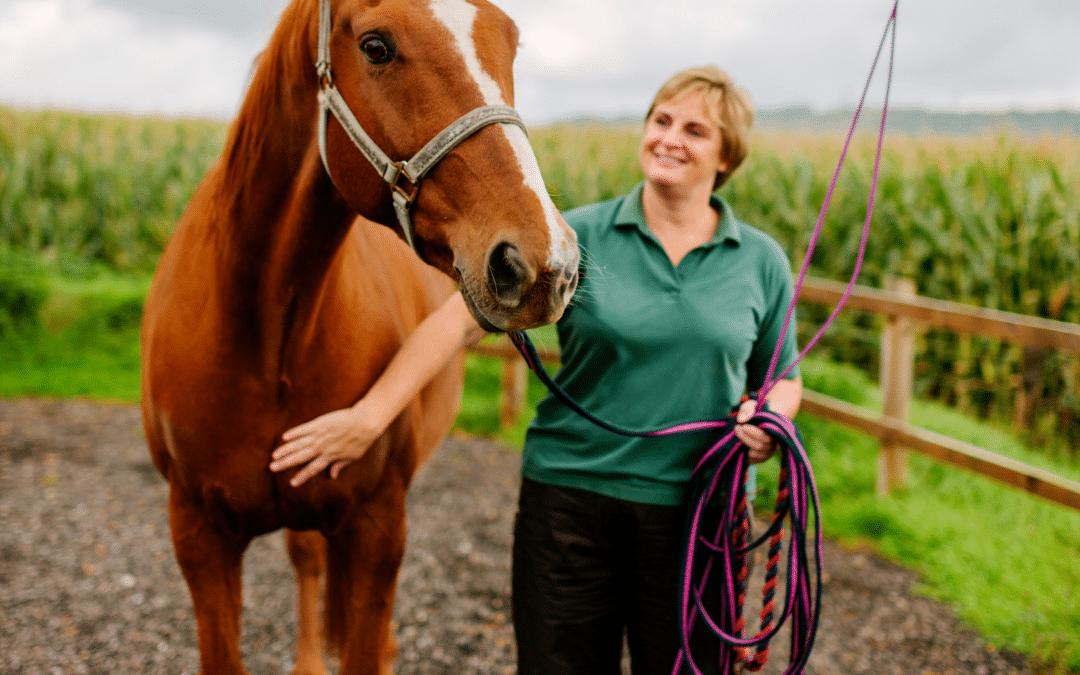 The Basics of Equine Insurance